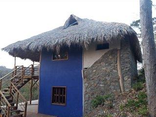 Beautiful Jungle Casa , walking distance to beach & town