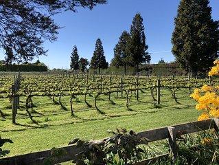 Vineyard Retreat near stunning Abel Tasman