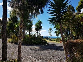 A Native Coastal New Zealand Experience