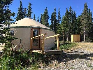 Mount Martha Black Yurt