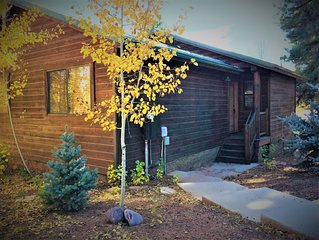 Cozy Contemporary Cabin in the Pines and steps from miles of US Forest Trails!
