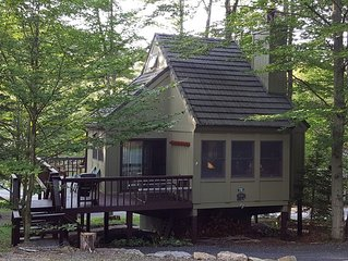 Large Updated Cabin w/Jacuzzi in Black Bear Resort