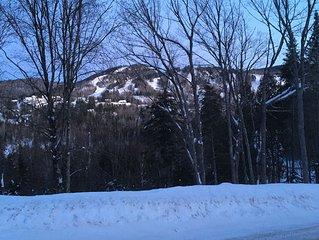 Le 21 - Vue sur la montagne de Val St-Côme