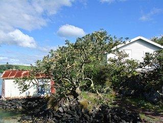 Bach 78 Islington Bay Rangitoto Island