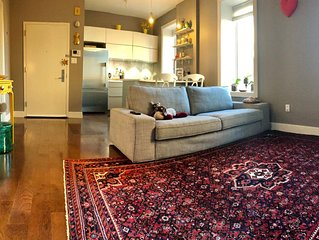 Luxury 2 bedrooms apartment in beautifully renovated Harlem condo
