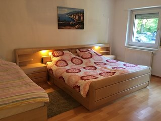 Nice Flat in Nurnberg - central area