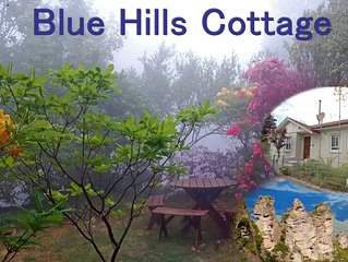 Blue Hills Cottage - Katoomba!