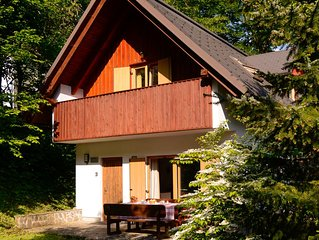 Spacious family chalet 200m from Lake Bohinj