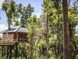 Excellent Resort with Amazing Rooms/Munnar