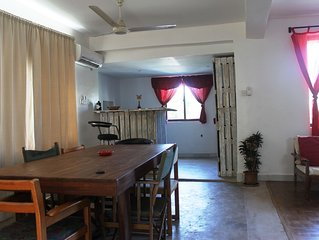 Homely & Friendly property