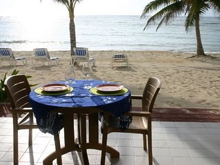 Beautiful Beachfront 2Br/2Ba (or 1BR/Ba) Condo with CELL PHONE and WiFi
