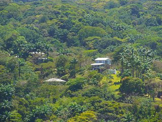 Villa Dynasty Tobago. Untouched Beauty.