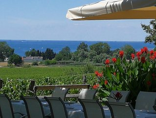 Suitable to Accomodate 6-12 Guests, relaxing In Tranquility of the Vineyards