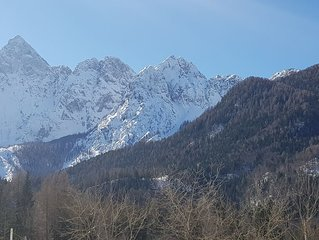 Cozy apartment in the heart of Julian Alps