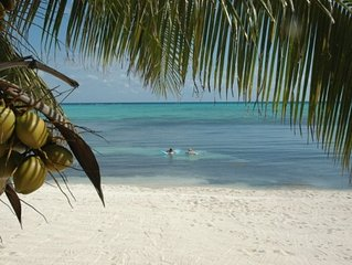 Quiet beach, turquoise snorkeling water, come relax in paradise