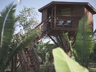 Tree house with pool access near ATM