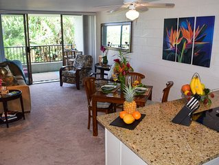 Upgraded 2BR Condo in Hilo, Hawaii