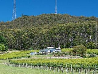 Stunning vineyard location in the beautiful Adelaide hills