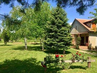 Artist ranch with vineyard, piano, kayak, bicycles and beautiful garden.