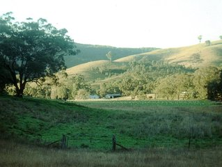 "Mudgee NSW ""KIRWIN"" Pet friendly 2 bedroom cabin on working sheep farm"