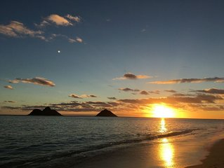 In the Heart of Kailua Town, minutes from the beach, Ideal Vacation Spot