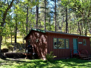 A gorgeous 2 bedroom cabin at the back of the property
