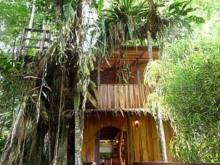 Enchanted Tree House experience with all the comforts!