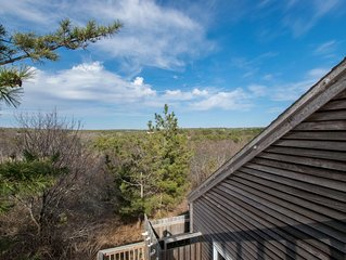 #202: Walk to the Beach, Amazing Outdoor Space, Roof-Level Deck, Updated!