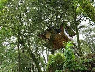 Awesome Beautiful view Stay/Resorts/Tree Houses