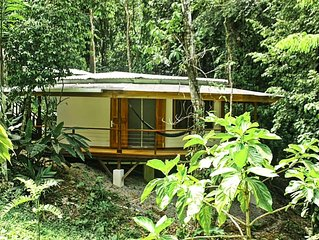 Cocles Magical Rainforest Deluxe Retreat Home