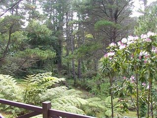 Pines Holiday Retreats