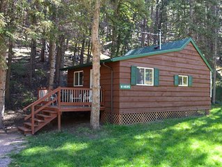 A beautiful one bedroom cabin minutes from Rushmore