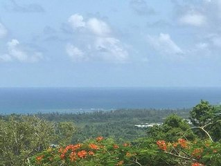 View to Live for in Puerto Rico