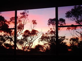 Treetops and Sunsets