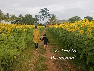 Surrounded by Greenery view Home Stay * masinagudi