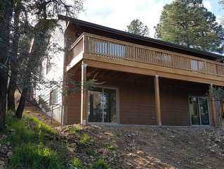 Brand new house in the pines