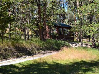 A cute cabin tucked away in the woods. Perfect for romantic get-aways