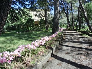Charming Sicilian Villa of the century 1800 with old trees park,view Etna and se