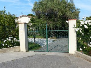 Les roses blanches CANNES MOUGINS