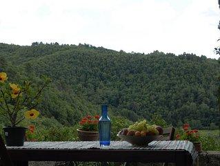 Chianti Mariuccia appartamento su due livelli nel verde tra boschi a vigne