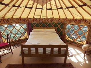 Holly Yurt - One Bedroom Camping, Sleeps 3