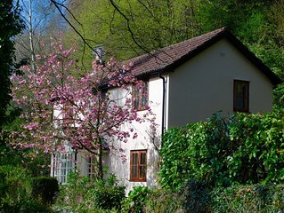 Pretty 2 bed Cottage in Wye Valley Area of Outstanding Natural Beauty