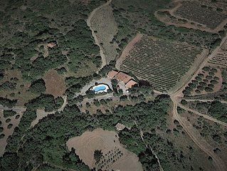 Languedoc Villa with Pool, Vineyards,Olive Groves and views