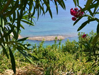 Cute 2 bedroom apartments in beautiful fruit garden - touch of real Kefalonia!
