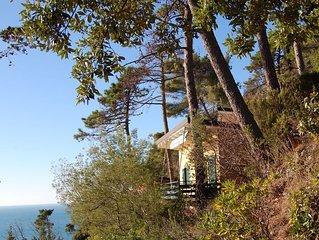 Villa  nel parco  sul mare