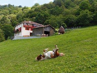 Casa rural Bagoleko Borda I