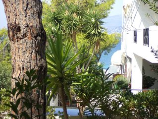 PARADISO Ισογειο διαμερισμα στη Σαρωνιδα