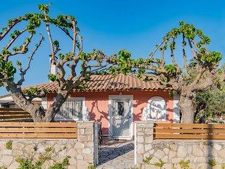 Olive Tree House …..