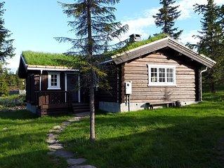 Koselig family cabin at Skeikampen in heart av Norway