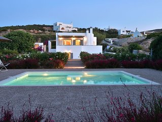 Next to Naoussa, private pool, independent villa
